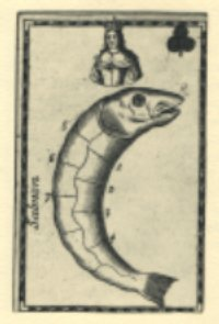 salmon_card.jpg